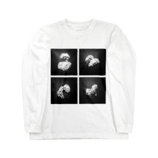 Rosetta [Monoclo] Long sleeve T-shirts