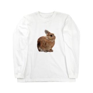 羊毛フェルトのふわふわ野うさぎ Long sleeve T-shirts