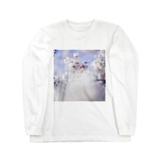 桜_1 Long sleeve T-shirts