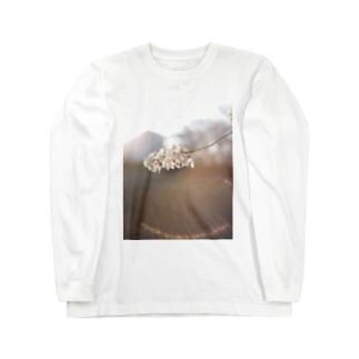 桜_2 Long sleeve T-shirts