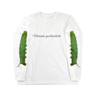 モモスズメ幼虫と成虫(幼虫が袖ver) Long sleeve T-shirts