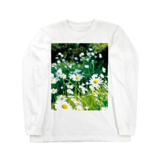 癒しの風景(シャスタデイジー) Long sleeve T-shirts
