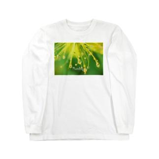 ビョウヤナギ Long sleeve T-shirts