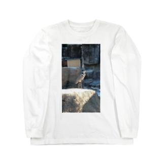 鳥(ペンギン含む) Long sleeve T-shirts