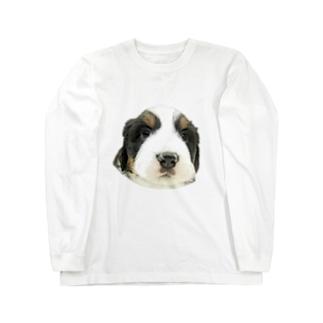 バーニーズマウンテンドッグA 子犬 Long sleeve T-shirts