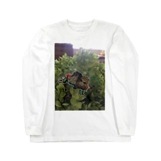 せんせーと石くん ボタニカル Long sleeve T-shirts