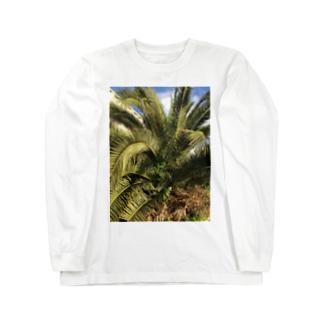 ソテツ Long sleeve T-shirts