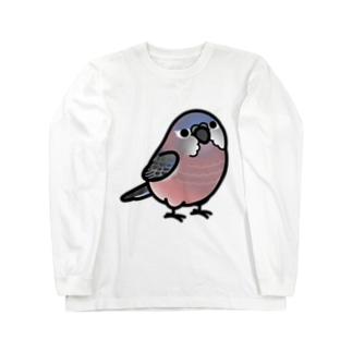 Chubby Bird アキクサインコ Long sleeve T-shirts