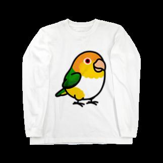 Cody the LovebirdのChubby Bird シロハラインコ Long sleeve T-shirts