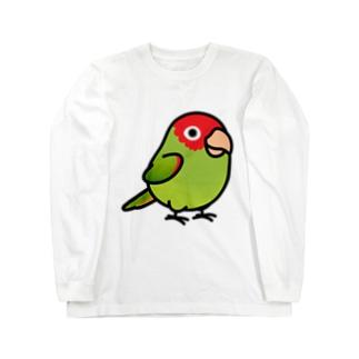 Chubby Bird オナガアカボウシインコ Long sleeve T-shirts