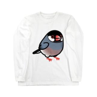 Chubby Bird 桜文鳥 Long sleeve T-shirts