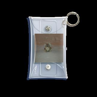 maroyakafruitの個人輸入屋さんの🏔 Mini Clear Multipurpose Case