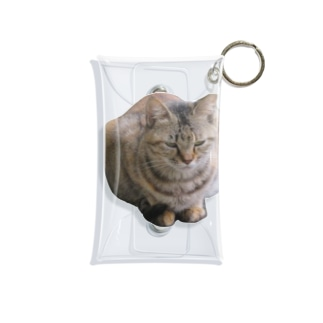 睨みを効かせた猫 Mini Clear Multipurpose Case
