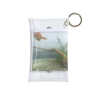 金魚水槽🐠 Mini Clear Multipurpose Case