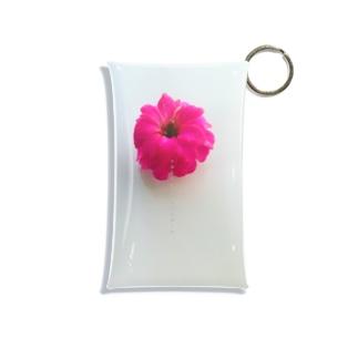カランコエ  ミニクリアマルチケース Mini Clear Multipurpose Case