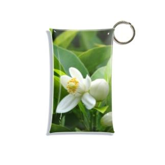 日本の花:ミカンの花 Japanese flowers: Mikan (Orange) Mini Clear Multipurpose Case