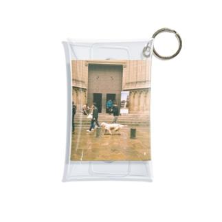 Golden retriever Mini Clear Multipurpose Case