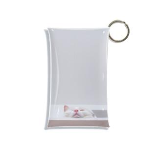 下から見る 猫 Mini Clear Multipurpose Case