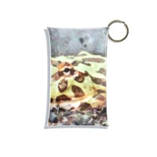 ばにーすぺーのベルツのガエルくん Mini Clear Multipurpose Case