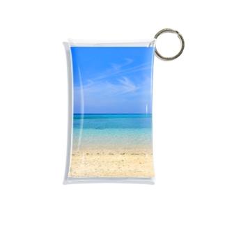 secret blue Mini Clear Multipurpose Case