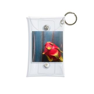 ドラゴンフルーツ Mini Clear Multipurpose Case