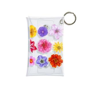 お花寄せ植え 横長みっちり Mini Clear Multipurpose Case