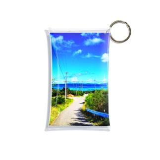Select the road Mini Clear Multipurpose Case