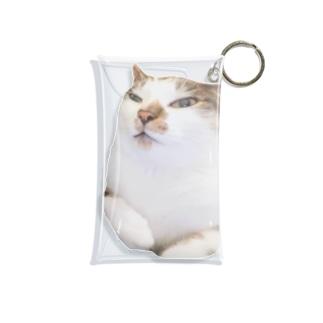ちーくん Mini Clear Multipurpose Case