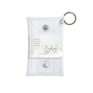 Fabulous Marvelous amazing Precious Mini Clear Multipurpose Case