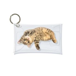 Natsune ごろん Mini Clear Multipurpose Case