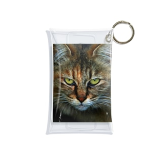 CAT Mini Clear Multipurpose Case