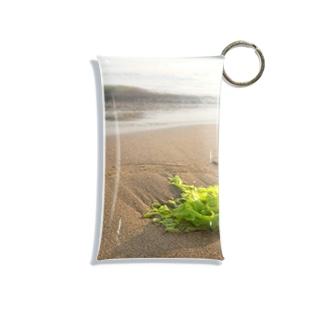 浜辺に打ち上げられた海藻 Mini Clear Multipurpose Case