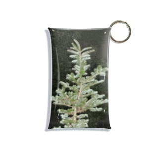 Tree Mini Clear Multipurpose Case