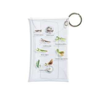 関東のカマキリ(背景透過ver) Mini Clear Multipurpose Case