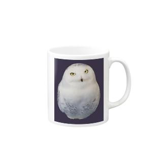シロフクロウ Mugs