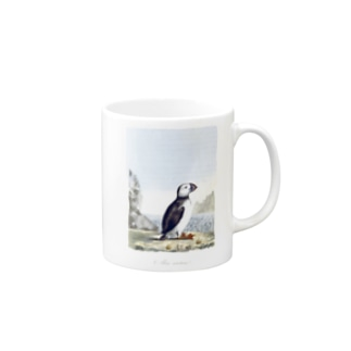 British Ornithology; being the history, with a coloured representation of every known species of British birds - The British Library Mugs