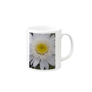 真っ白く・・・清らかに Mugs