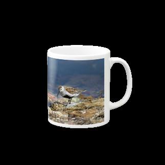 動画メディア&自然の情報館のハマシギ Mugs
