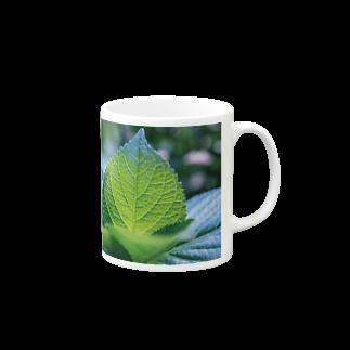 abelestの紫陽花の葉脈 マグカップ