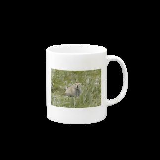 ゆきうさぎ工房のにこにこナキウサギ Mugs
