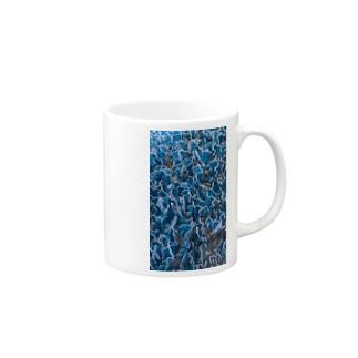masato 5 Mugs