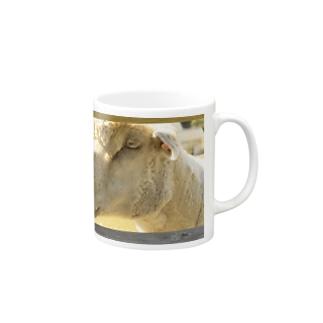 Peeping Mugs