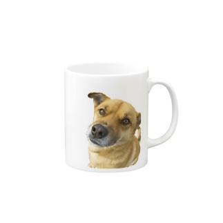 雑種犬こたろうくん Mugs