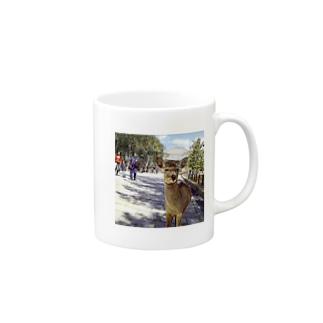 カメラ目線の奈良の鹿 Mugs