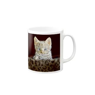 ヒョウ柄子ネコ Mugs