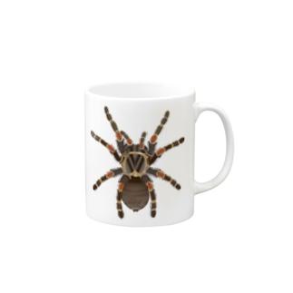 Drecome_Designのいたずらデザイン(ちょっとタランチュラついてますよ) Mugs