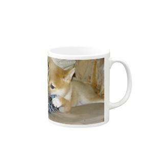 日本の犬:柴犬 Japanese dog: Shiba inu Mugs