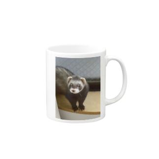 フェレット Mugs