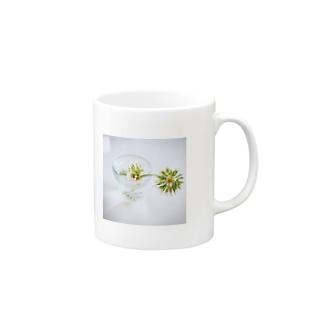 渇き Mugs