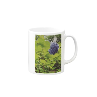 美しさ浮かび上がる雨に濡れた紫陽花 Mugs